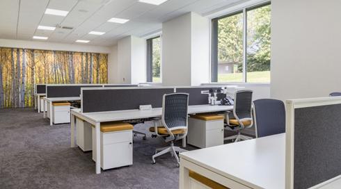 Diamond Polish For Interiors HQ